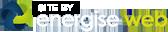 Energise Web Designers NZ